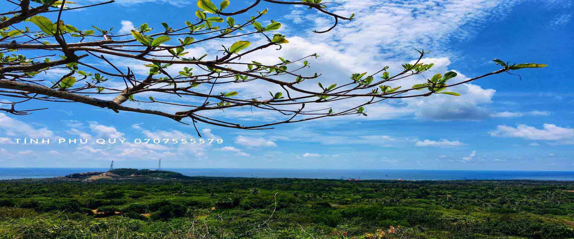 Đảo Phú <i>Qúy</i>
